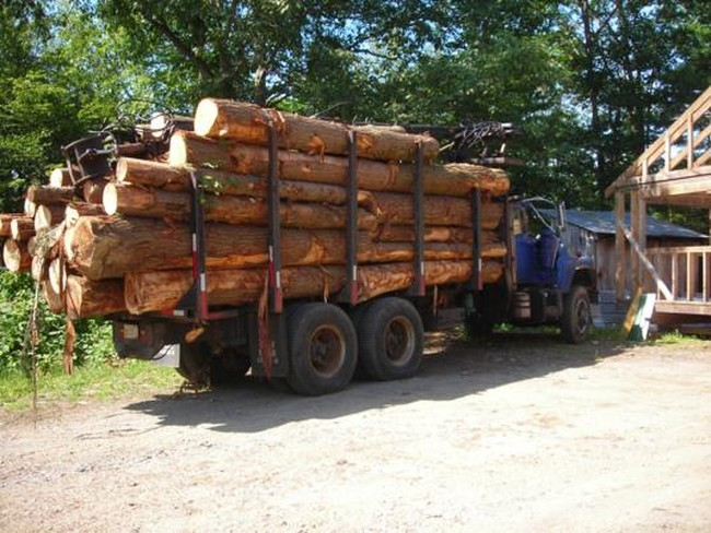 Three Log Load ~ A load of pine logs arriving at the saw mill in colrain
